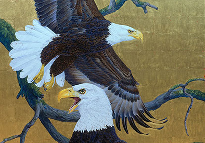 Robin Hill | BALD EAGLES